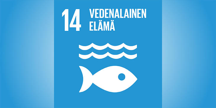 Sustainable goal no. 14